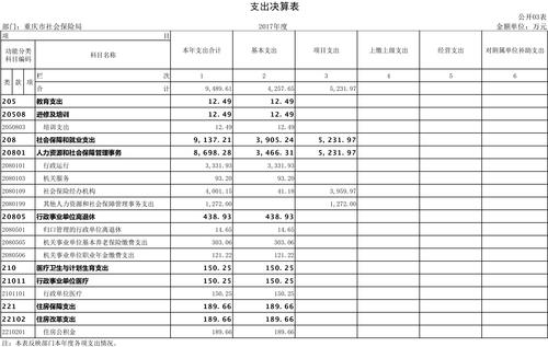 重庆市社会保险局2017年部门决算公开挂网-3