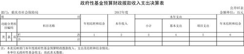 重庆市社会保险局2017年部门决算公开挂网-7