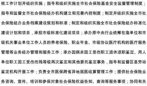 重庆市社会保险局2019年部门预算情况说明-2