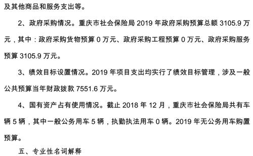 重庆市社会保险局2019年部门预算情况说明-6