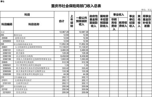 3月11日预算公开套表-7