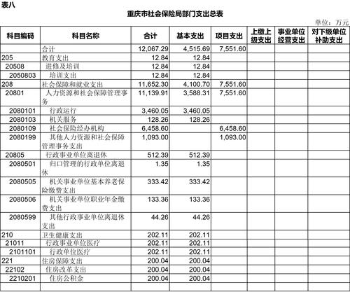3月11日预算公开套表-8