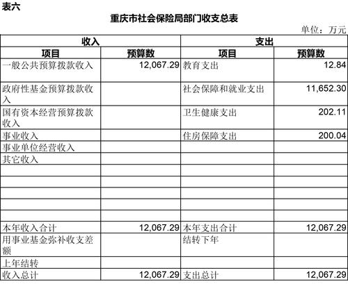 3月11日预算公开套表-6