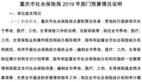 重庆市社会保险局2019年部门预算情况说明-1